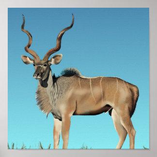 Kudu JVG Poster