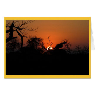 Kudu Sunset Card