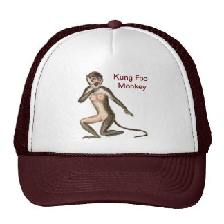 Kung Foo Monkey Cap