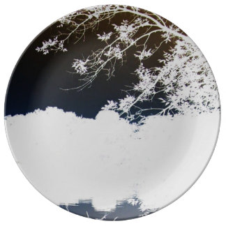 Kyoto Plate