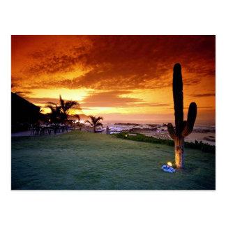 La Concha restaurant, Baja, Mexico Postcard