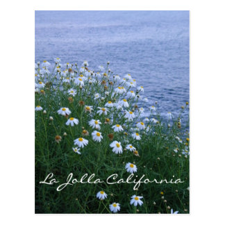 La Jolla Flowers and ocean Postcard