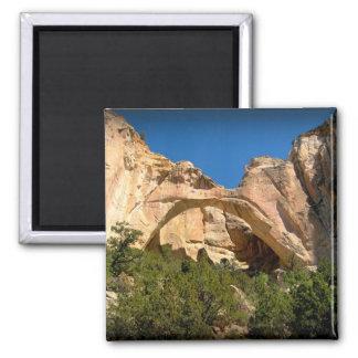 La Ventana Arch, New Mexico Square Magnet