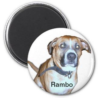 Lab Dog magnet