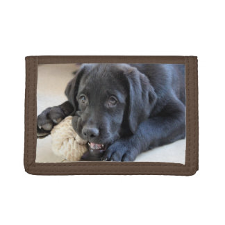 Lab Labrador Retriever Eyes Face Puppy Pet Tri-fold Wallet