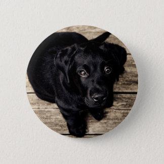 lab puppy 6 cm round badge