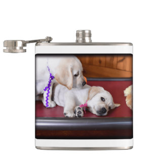 Lab Puppy Looking Down Hip Flask