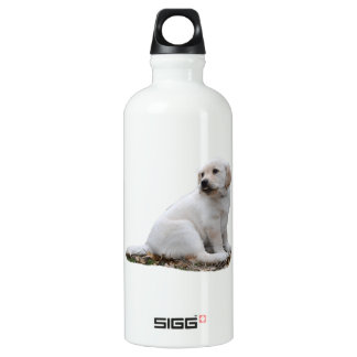 Lab Puppy With Head Turned Water Bottle