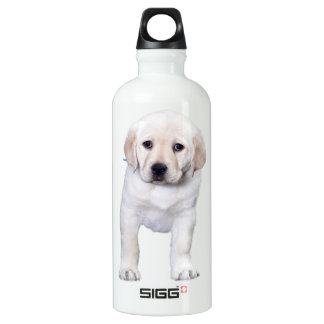 Lab Standing Tall Water Bottle