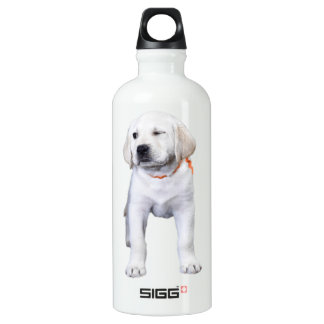 Lab With a Wink Water Bottle