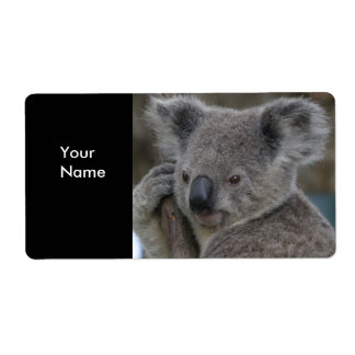 Label Address Stickers Koala Bears Shipping Label