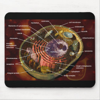 Labeled human cell mouse pad