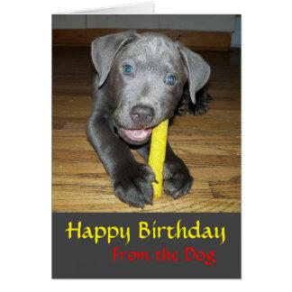 Labrabull Puppy Dog Lover Birthday Card Note Card