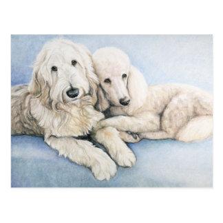Labradoodle and Standard Poodle Dog Art Postcard