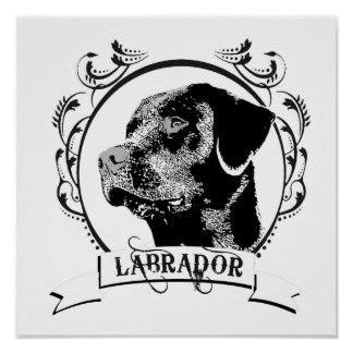 LABRADOR (5) POSTER