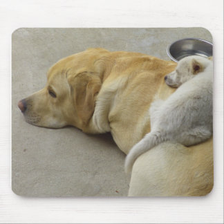 Labrador and cute puppy sleeping mouse pads