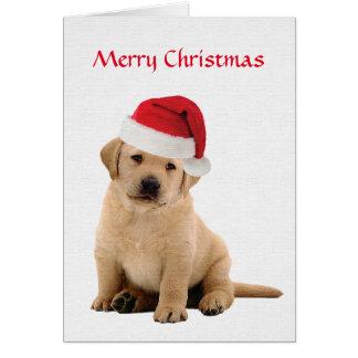 Labrador Christmas Card Yellow
