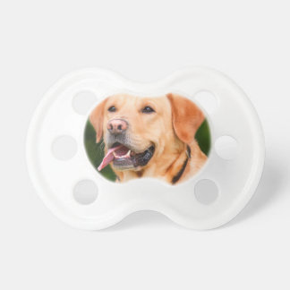 Labrador Dog Dummy
