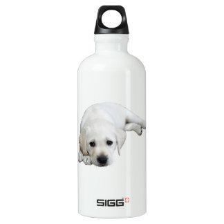 Labrador Looking Upwards Water Bottle
