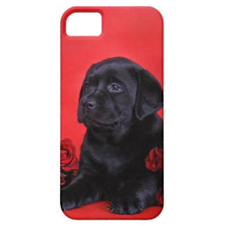 Labrador puppy and roses barely there iPhone 5 case