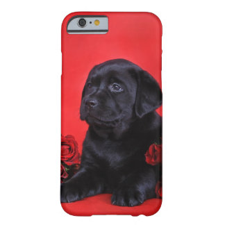 Labrador puppy and roses barely there iPhone 6 case