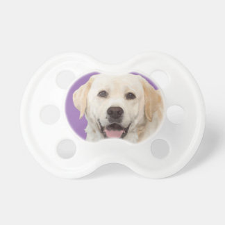 Labrador retriever 1 dummy