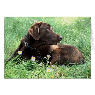 Labrador Retriever And Purple Flowers Card