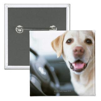 Labrador Retriever 15 Cm Square Badge