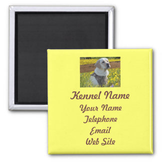 Labrador Retriever Breeder Magnet