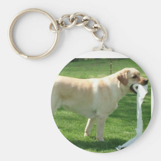 Labrador retriever cleaning up basic round button key ring