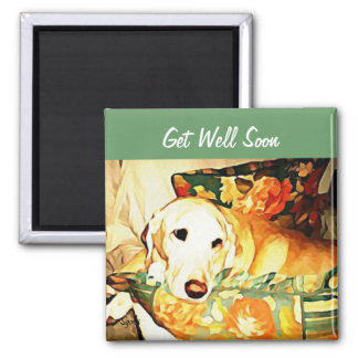 Labrador Retriever Get Well Magnet