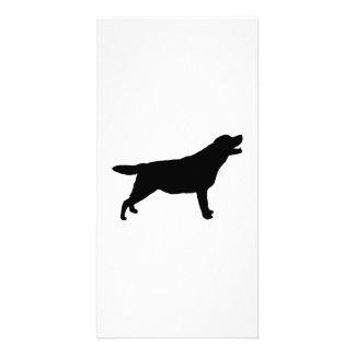 Labrador Retriever hunting dog Silhouette Customized Photo Card