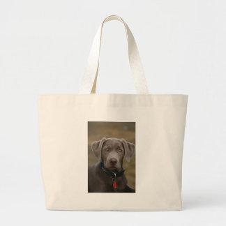 Labrador Retriever In Rare Light Silver Large Tote Bag