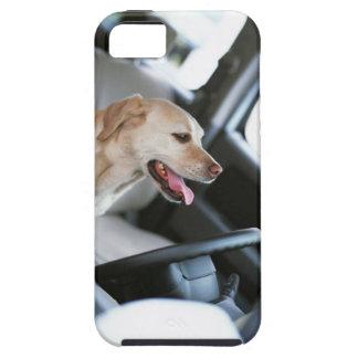 Labrador retriever iPhone 5 cover