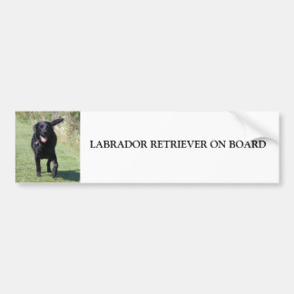 Labrador Retriever on board black dog, gift Bumper Sticker