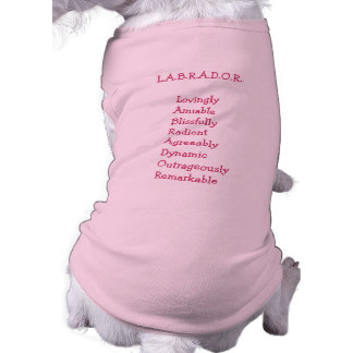"""Labrador Retriever """"Personality""""Dog Sweater Shirt"""