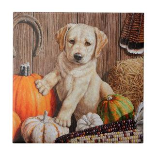 Labrador Retriever Puppy and Pumpkins Ceramic Tile