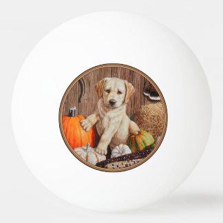 Labrador Retriever Puppy and Pumpkins Ping Pong Ball