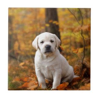 Labrador retriever puppy ceramic tile