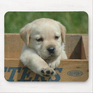 Labrador Retriever Puppy Dog Mouse Pad