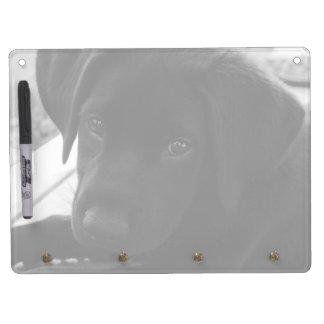 Labrador Retriever Puppy Horizontal Dry-Erase Whiteboard