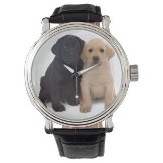 labrador retriever puppy wristwatch