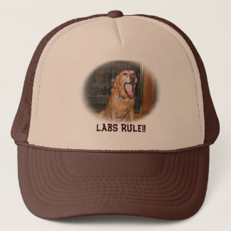 Labs Rule Hat