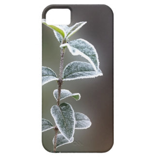 lace on leaves iPhone 5 cover