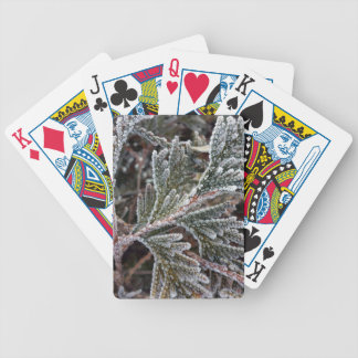 Lace on twigs bicycle playing cards