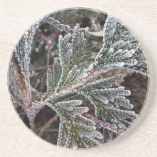 Lace on twigs coaster