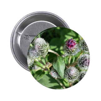 lace over thistle 6 cm round badge