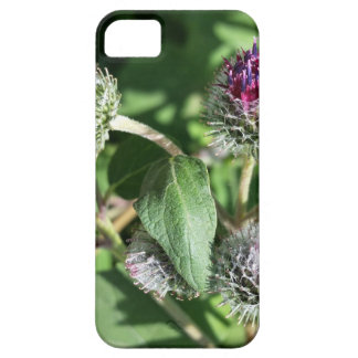 lace over thistle iPhone 5 case