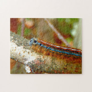 Lackey Moth Caterpillar Photo Puzzle with Gift Box