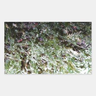 Lacy Moss Rectangular Sticker